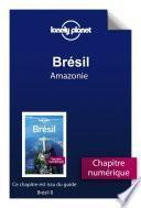 Brésil 8 - Amazonie