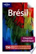 Brésil - Amazonie