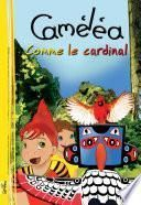 Caméléa comme le cardinal