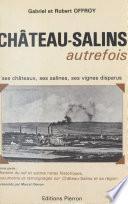 Château-Salins autrefois : Ses châteaux, ses salines, ses vignes disparus