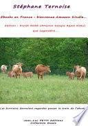 Ebooks en France : bienvenue Amazon Kindle ; Edition : Plutôt AGAK (Amazon Google Apple Kobo) que Lagardère