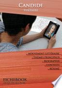 Fiche de lecture Candide (résumé détaillé et analyse littéraire de référence)
