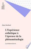L'Expérience esthétique à l'épreuve de la phénoménologie