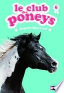 Le club des poneys - Tome 6