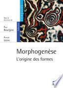 Morphogenèse. L'origine des formes