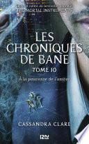 The Mortal Instruments, Les chroniques de Bane - tome 10 : À la poursuite de l'amour